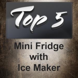 Mini Fridge with Ice Maker